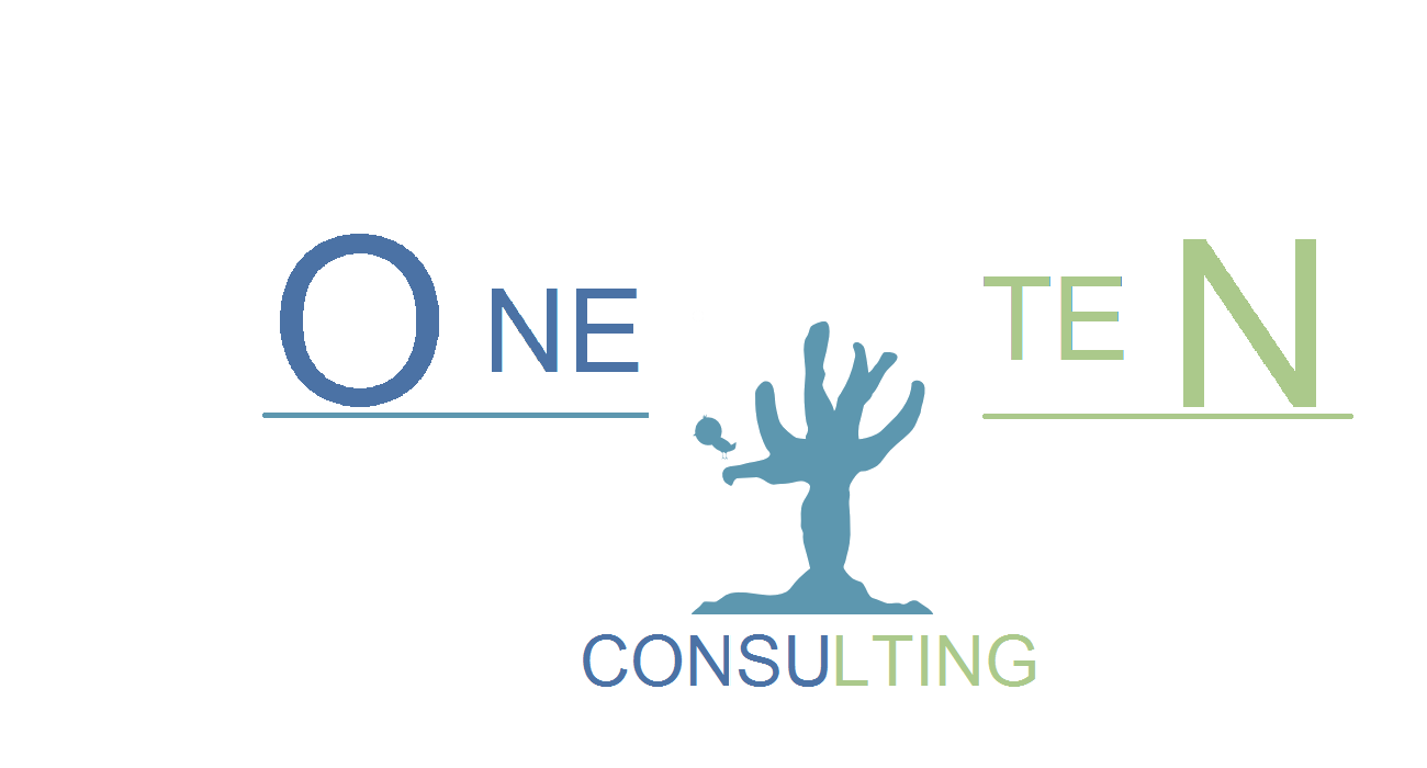 ONE TEN CONSULTING